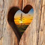3 הסברים לאהבה בכל השפות