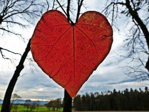 אהבה חזקה שמנצחת