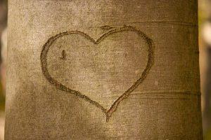 יום האהבה הבינלאומי