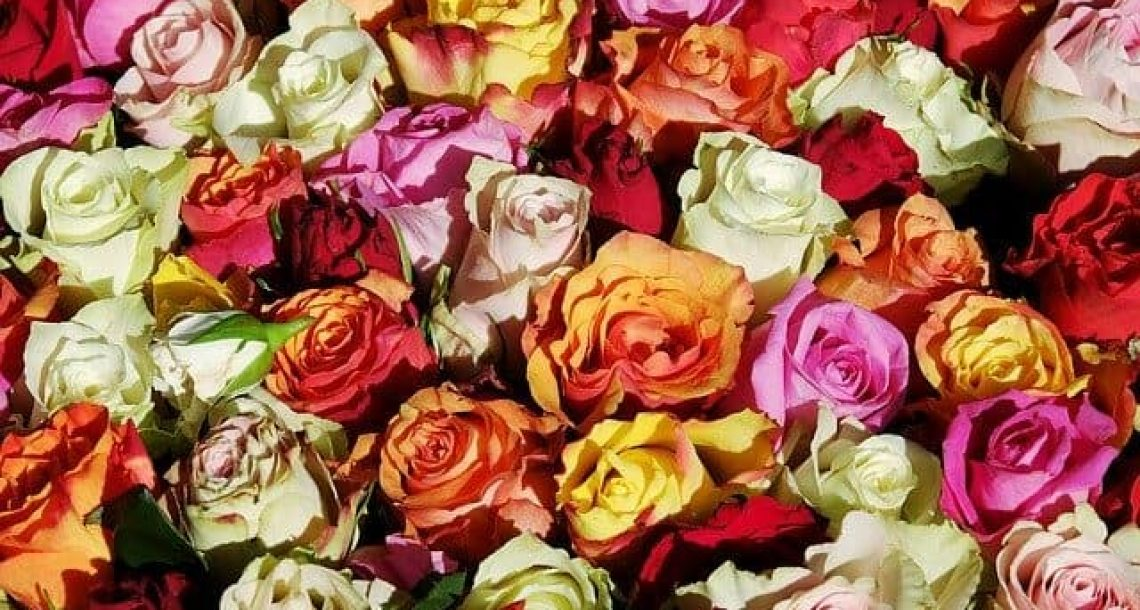 5 מתנות מקוריות ליום נישואין לאישה